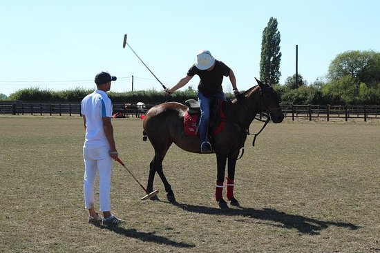HORSE & POLO HALVE DAG IN WINDSOR VK