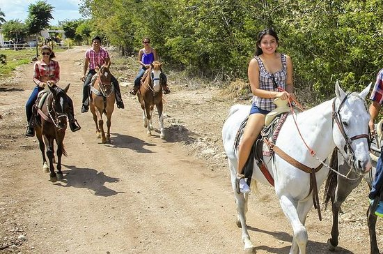 Horseback riding with bike rental and...