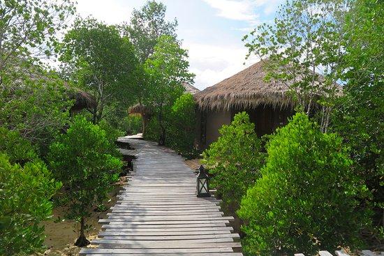 The Blue Sky Resort Koh Payam: ทัศนียภาพโดยรอบ บริเวณ ที่พัก แบบมัลดีฟ สไตล์ วิลล่า ที่สร้าง เป็นลักษณะคล้ายกระโจมที่ใช้วัสดุจากธรรมชาติเป็นหลักในส่วนโครงสร้างของห้องพักและการตกแต่งภายในก็เน้นความหรูหราแบบเรียบง่ายแต่มีสไตล์ครับ