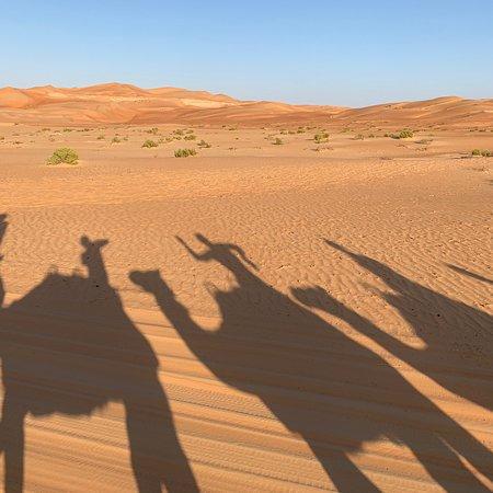 Un véritable Eden au milieu des Dunes