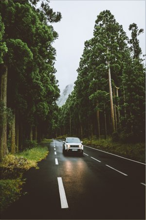 Reunion Island: La Réunion par @jackharding, @wildlicht et @giuligartner 😍