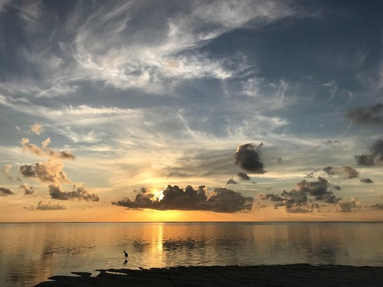 Alphonse Island, Ilhas Seychelles: An afternoon fishing on foot.