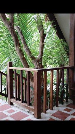 Upper Chalet Balcony Views