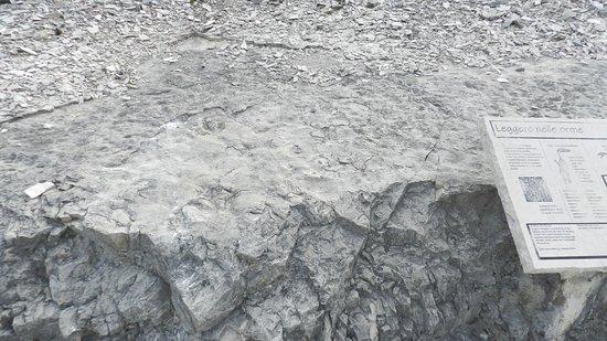 Dinosaurs's Trail : IL cartello in marmo con le orme attorno