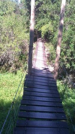 """Villaguay, Argentina: Puente colgante en reserva """"La chinita"""", un atractivo un poco extremo del parque. Cruzarlo con cuidado pero animarse buena adrenalina."""