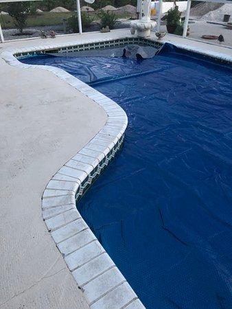 אנגלווד, פלורידה: Fountain and pool cover to retain the heat