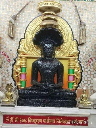 Vighnahar Parshwanath Digambar Jain Mandir