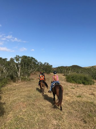 Снимок Far West Ranch