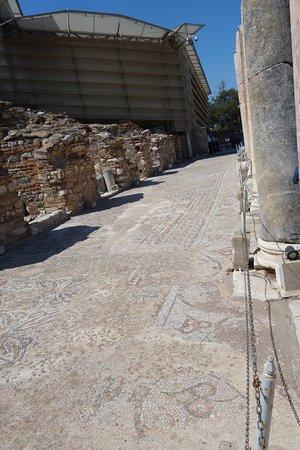 Ancient City of Ephesus: モザイクが残る、丘の上の住宅