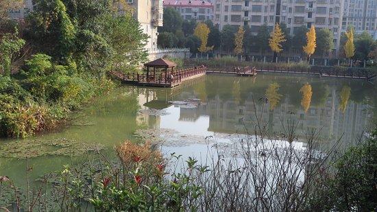 Yueyang, Kina: Lake at Jin E Shan Park