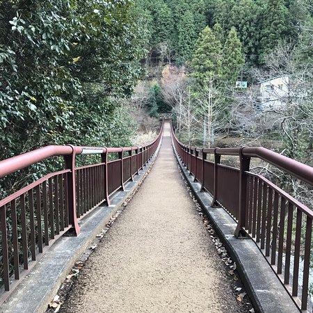 紅葉がきれいな橋