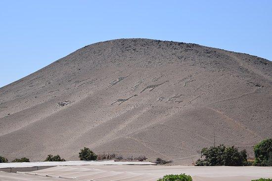 La Tropilla Geoglyphs