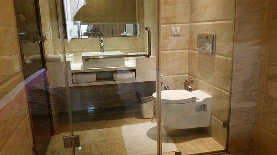 Hotel City Park Amritsar: Glass into bathroom