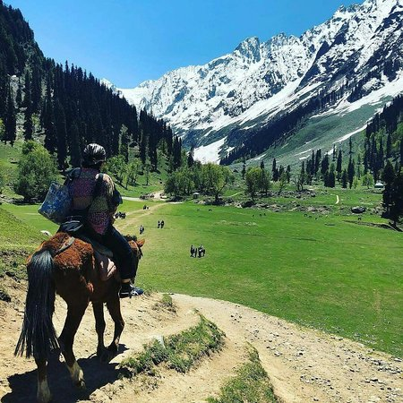 "Kaschmir, Indien: Explore the nature.""sonamarg"""