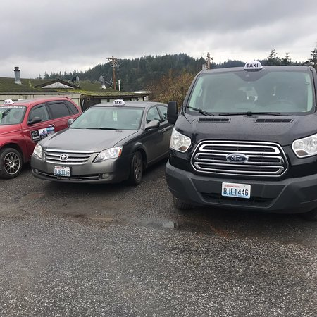 These are my taxis 2016 transit van 14passenger. 2007 Toyota Avalon 4passengers. 2001 PT Cruiser 4passenger. My two daughters Erika an Tori. I also rent scooters. 50cc reservations only. They are ride at your own risk. $85from 9am-6pm. Or $25 hr. Must have valid drivers license. Multiple  day rentals you can keep over night. No off road riding. Reservations are highly recommended. 360-376-8294. Cell 360-298-6416