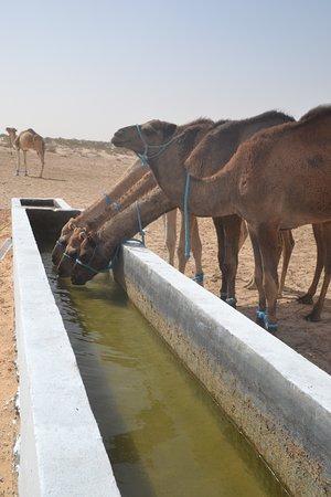 enfin de l'eau