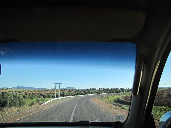 Private Tour: Ouzoud Falls Day Trip from Marrakech: Fahrt nach Ouzoud