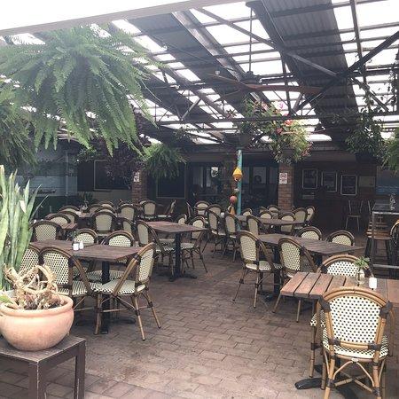 Tea Gardens Foto