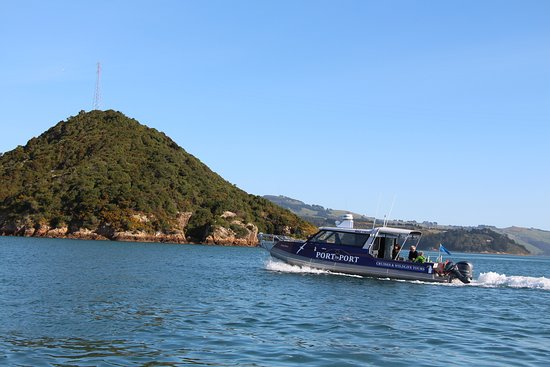 Port To Port Cruises And Wildlife Tours: Sootychaser on its ferry run to Portobello, from Port Chalmers