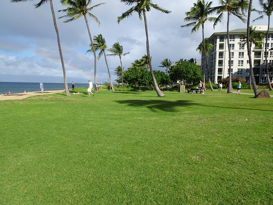 Park with perfect balance of sand and grass