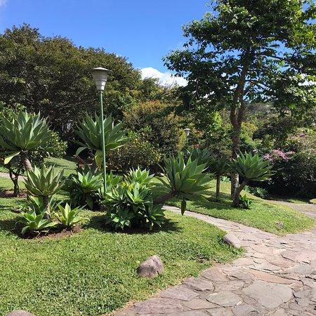 Great place to stay in Santa Elena, Monteverde region