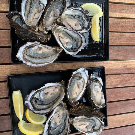 Freycinet Marine Farm: 超级鲜美,比悉尼的生蚝大好多,海胆也巨好吃! 可能是昨天在bicheno餐厅吃到的生蚝太难吃了,今天终于吃到了第一顿塔州生蚝,不虚此行