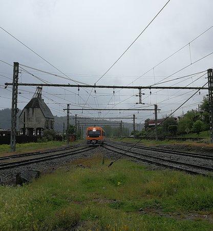 Tren Turistico Corto Laja
