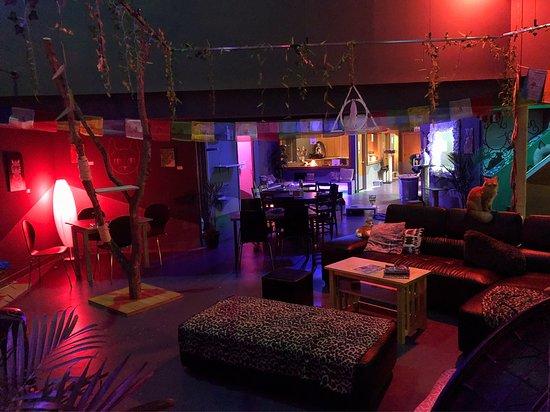 Organic Cat Cafe & Listening Lounge