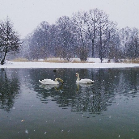 Kaliningrad, Russia: С первым снегом !