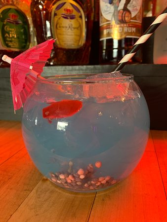 Hurley, WI: Fish bowls are awesome! With rocks and a fish!