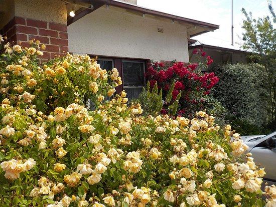 Floral display near front door