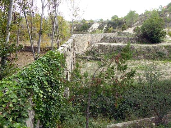 Aqueducto Medieval