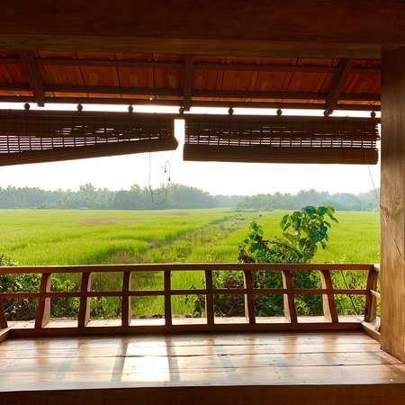 Payyanur, India: Just love this resort out of nowhere - perfect weekend getaway !