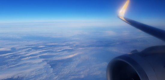 Pegasus Airlines: pegasus