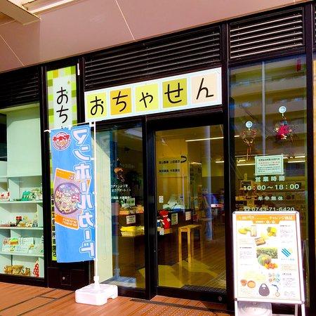 Ikoma Antenna Shop Ochiyasen
