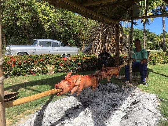 journée cubaine