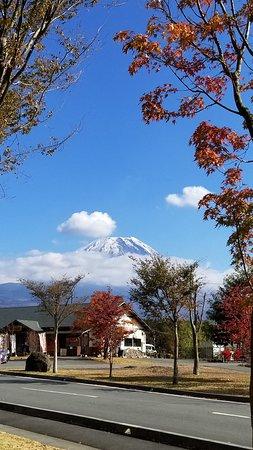 Asagiri Food Park: 敷地内は広いのでのんびり歩くのもいいでしょう