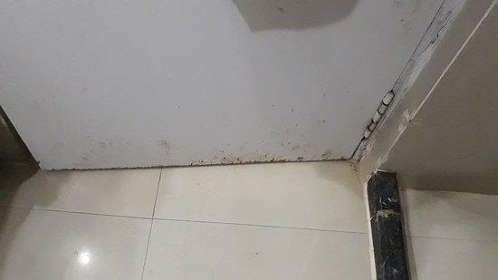 Dirty Hotel