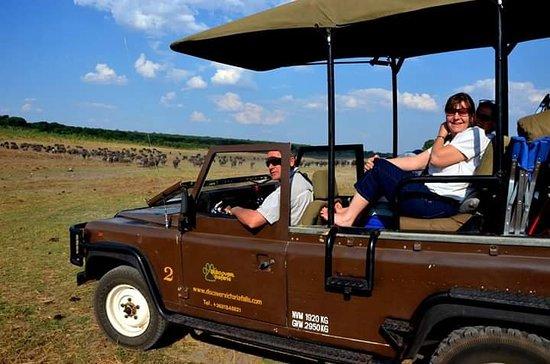 Victoria Falls, Zimbabwe: On safari with Discover Safaris...