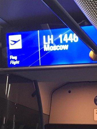 Lufthansa : encore des bus !!