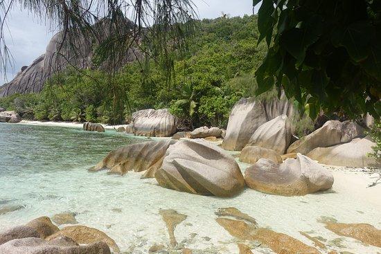 Excursión a Anse Marron: ...von hier aus geht es durch das Wasser
