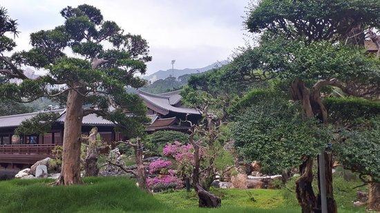 Diamond Hill: Nian Lin Garden