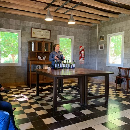Maipu wine tour and lunch