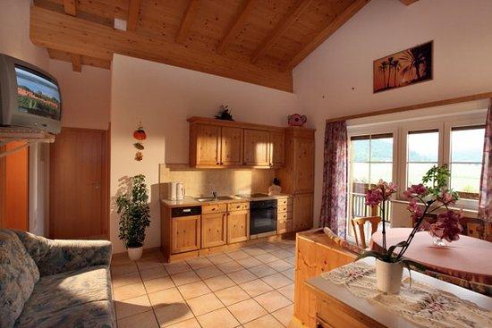 Waldschonau: Die Küche in der Ferienwohnung Gartenblick ist bestens ausgestattet: Wasserkocher, Kaffeemaschine, Geschirrspüler, E-Herd mit Backofen, Dunstabzug, Kühlschrank, Gefrierschrank, Fernseher, Radio, gemütliche Sitzecke, Couch, ausreichend Koch- und Essgeschirr vorhanden