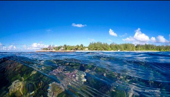 Denis, Seychellen: Vue du reef de plage Bois blanc