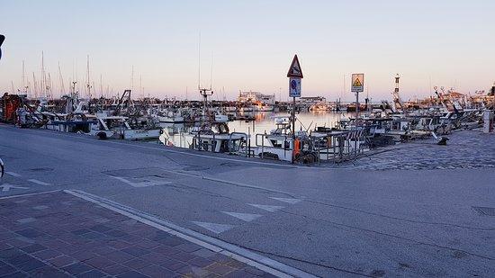 Porto Turistico Marina di Cattolica: porto
