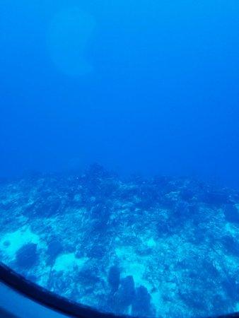 Fotografia de Expedição no Submarino Atlantis, Cozumel
