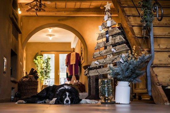 Krásná Lípa, Česká republika: The Christmast design