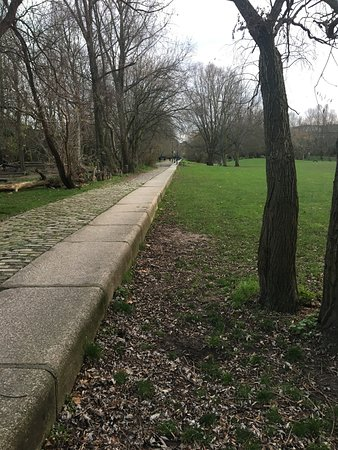 Stave Hill Ecological Park: Looking south down the old retaining wall of Russia Dock in Russia Dock Woodland - December 2018