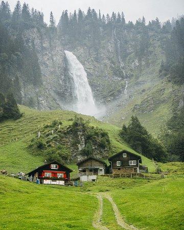 Швейцария: Roadside beauty.